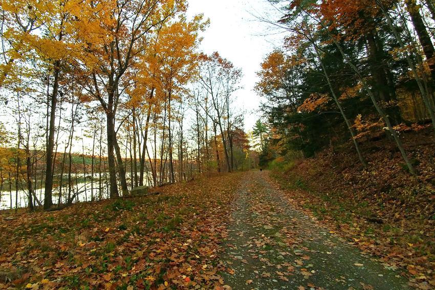 Hemlock Canadice State Park