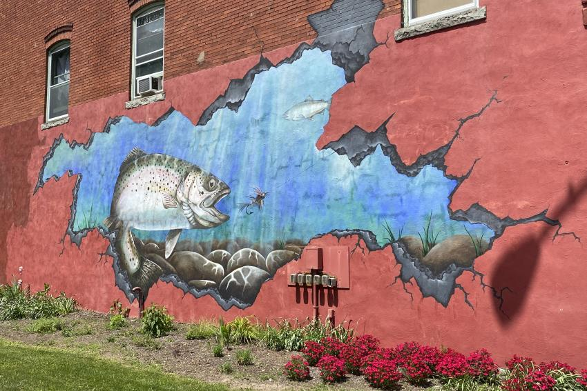 Rainbow Trout mural