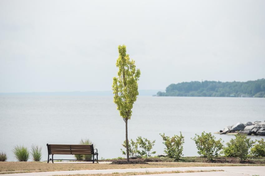 geneva-lakeshore