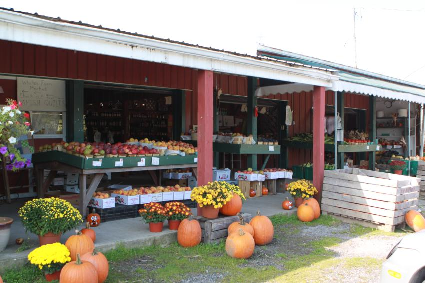 Whites Farm Market