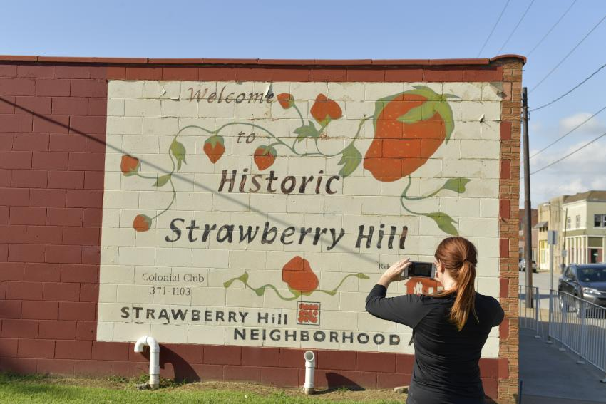 Strawberry Hill Mural