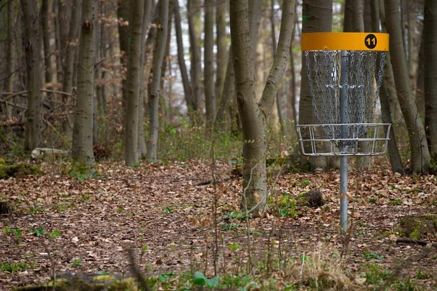 Disc Golf Cage by Trees