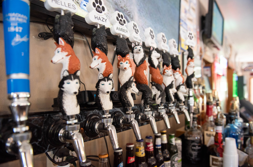 Three Huskies Tap Handles at Dobber's