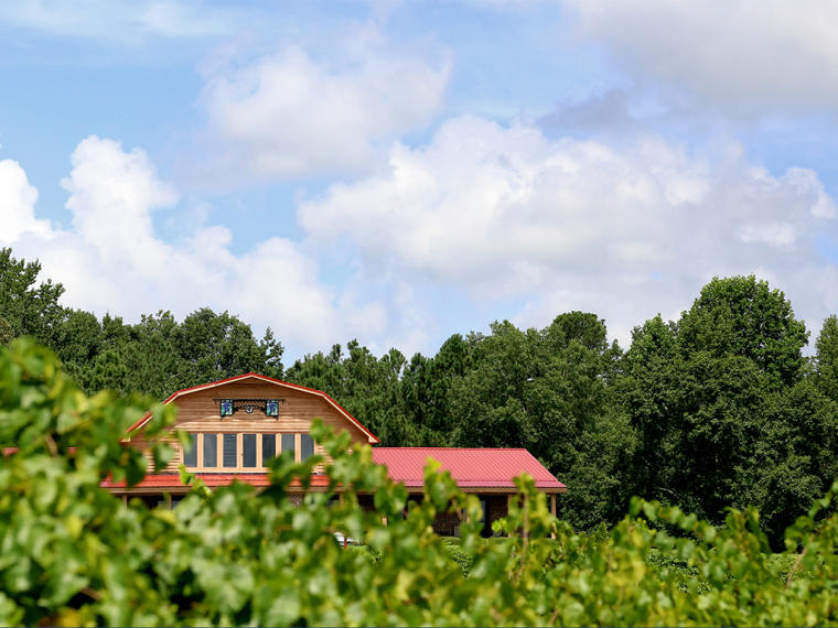Building over the vineyards at Gregory Vineyards in Benson, NC.