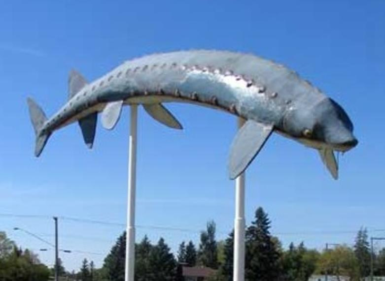 World's larget sturgeon momument in Dominion City, Manitoba