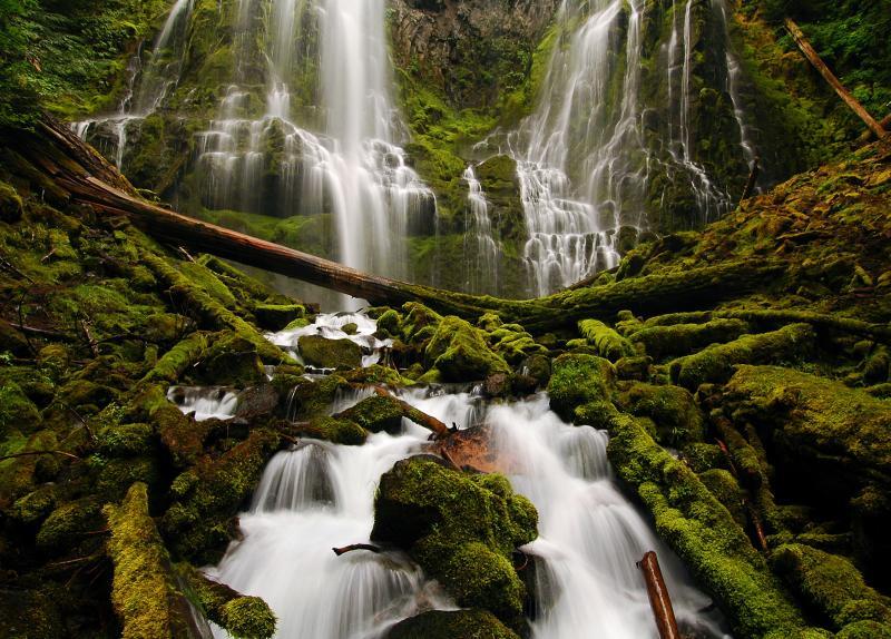 Proxy Falls in McKenzie River Region