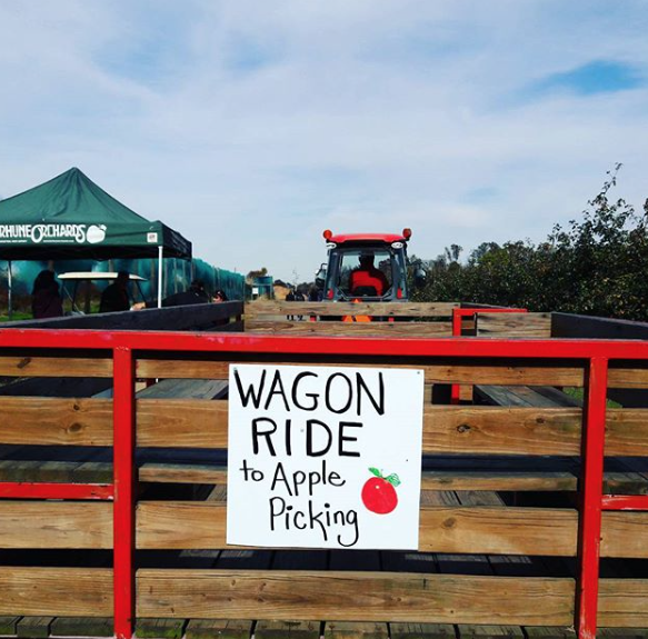 Terhune Orchards Wagon Ride to Apple Picking