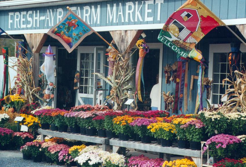 Fresh Ayr Farm Market