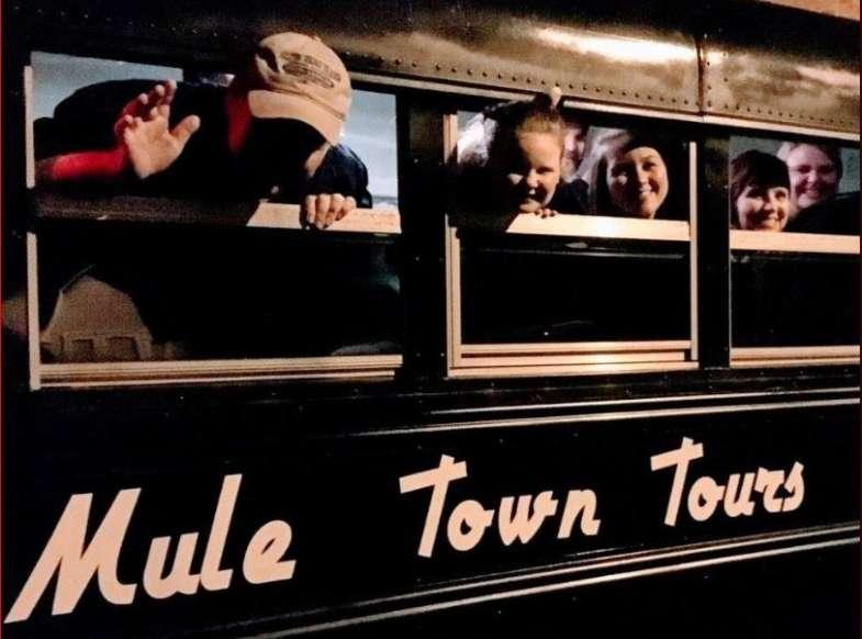 Mule Town Tours