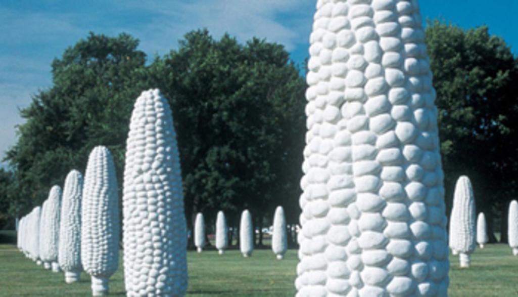 Field_of_Corn_vertical.jpg