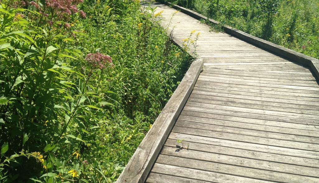 Kiwanis Riverway Park Boardwalk