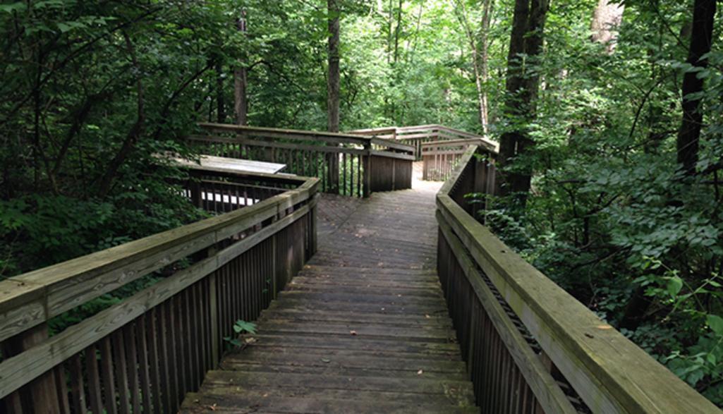 Amberleigh Park Walking Path