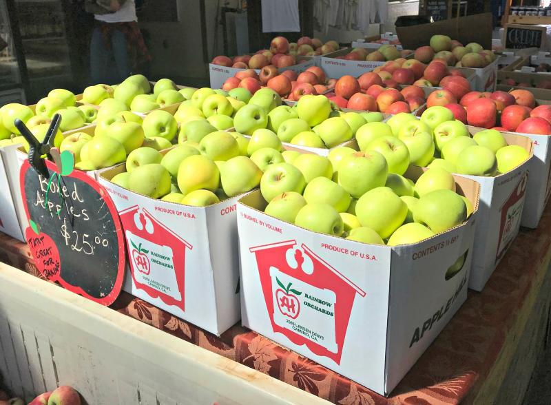 Apple Hill Apples