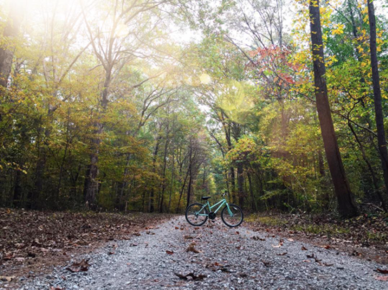 Wheeler-trail-and-bike_haileyclemmons