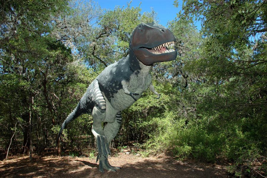 Dino Land Exhibit at Zilker Botanical Garden