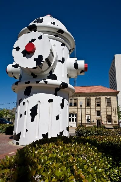 The Giant Dalmatian Fire Hydrant