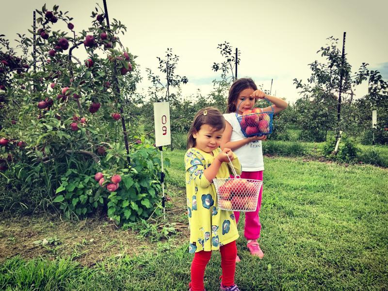 children at Wea Creek Orchard