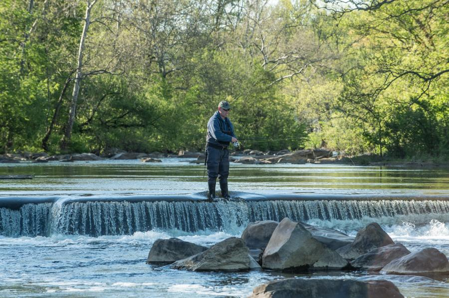 A lone fisherman enjoys fly-fishing in the picturesque Brandywine Valley.