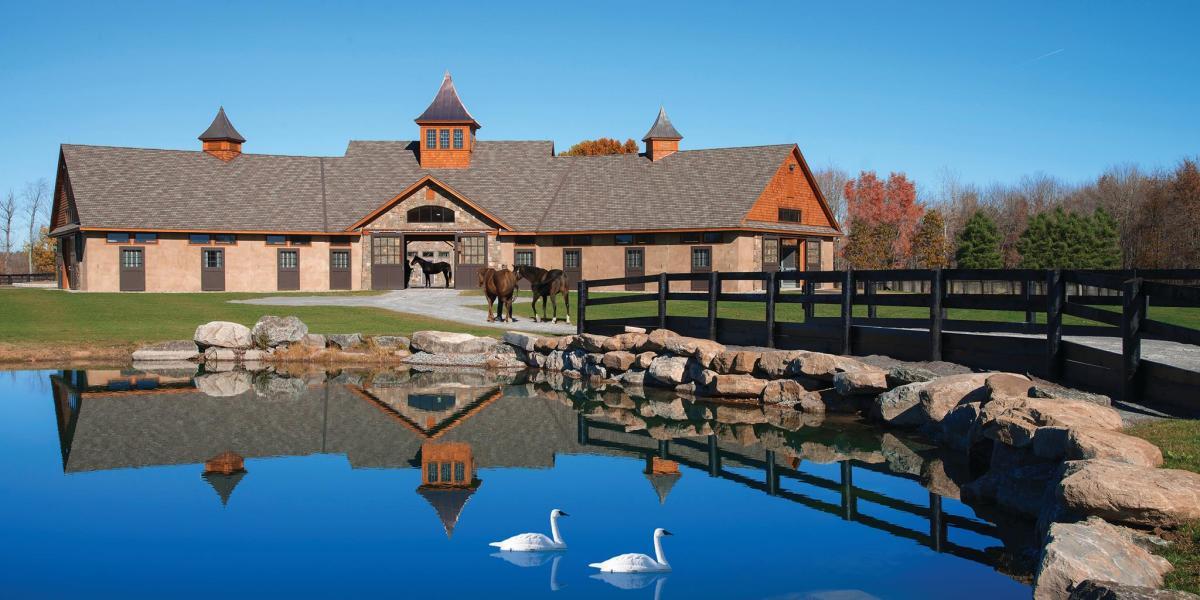 Horses running through Sugar Plum Farm in Saratoga NY near pond