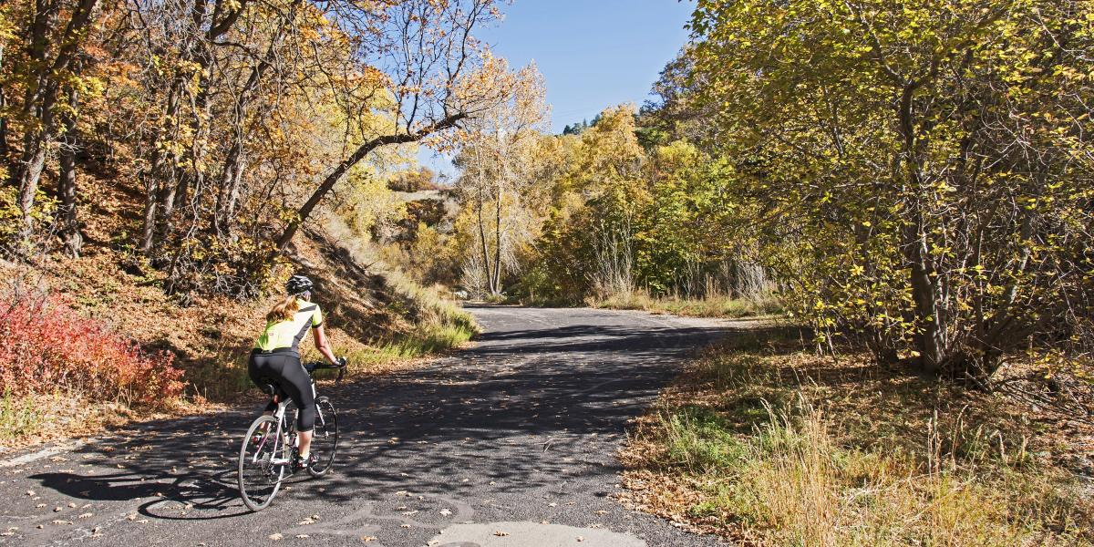 City Creek Canyon is perfect for hiking and biking