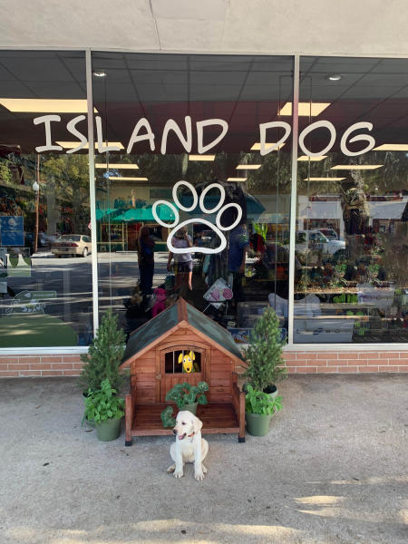 A puppy sitting in front of the Island Dog store on St. Simons Island, GA
