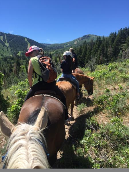 Group of people riding horses in a line