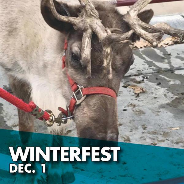 Winterfest Dec. 1