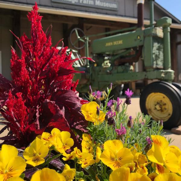lhfm flowers and tractor