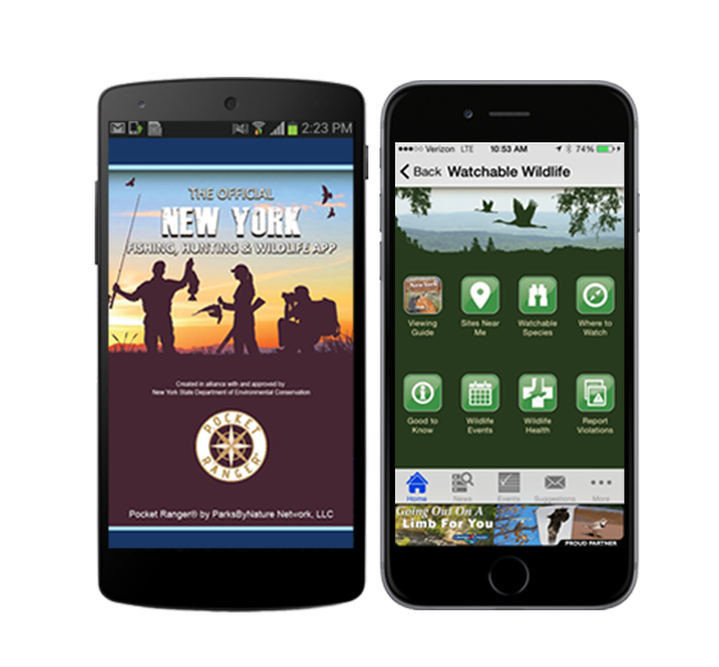 New York Fishing, Hunting & Wildlife App