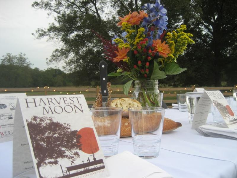 Harvest Moon Dinner table