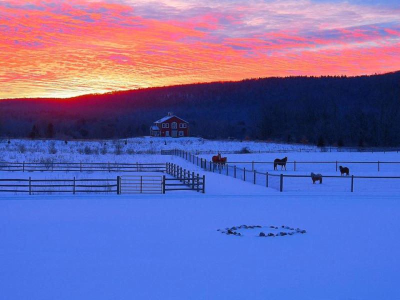 mountain-horse-farm-naples-exterior-sunset-horses