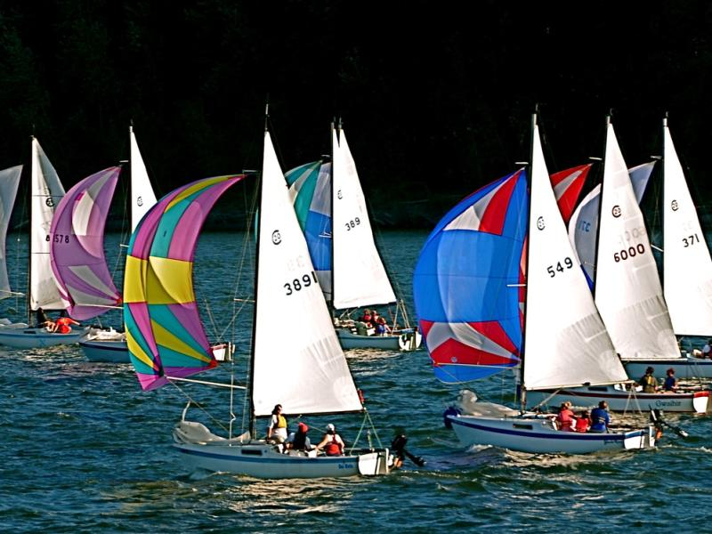 Sailboats on the river
