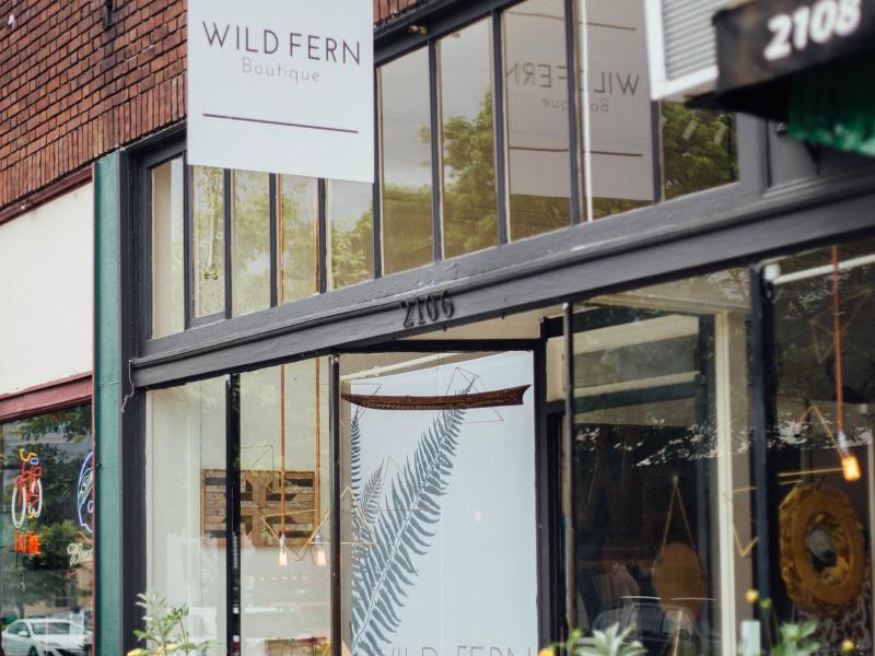 wild fern 2