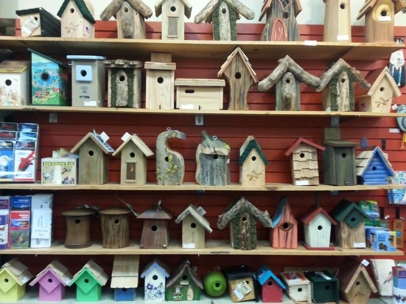 backyard bird shop birdhouses
