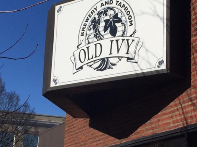 old ivy