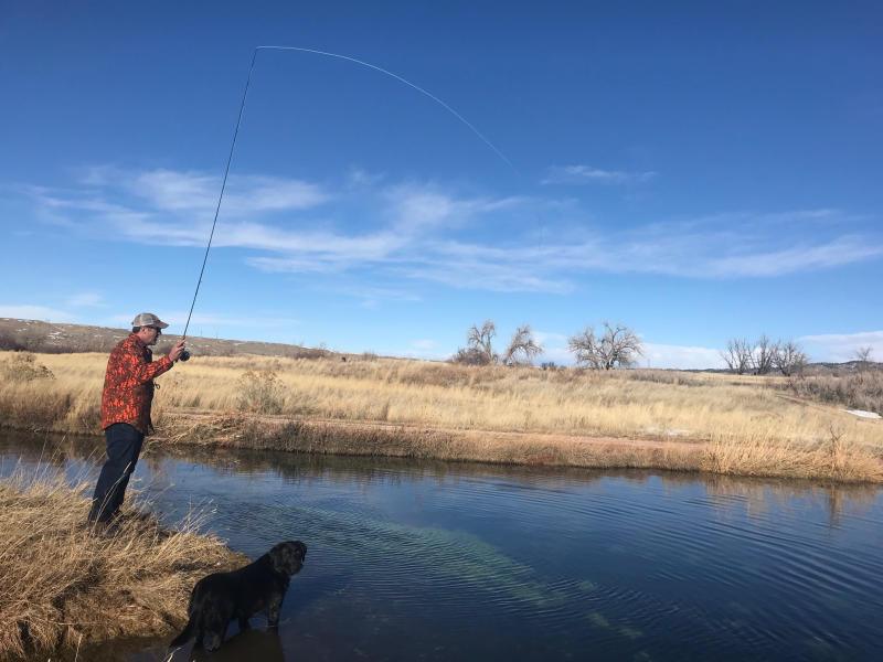 Two Trout, 5,000 Miles Apart 1
