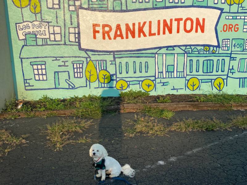 EC staffer Keiana Mitchell's dog Killian in Franklinton