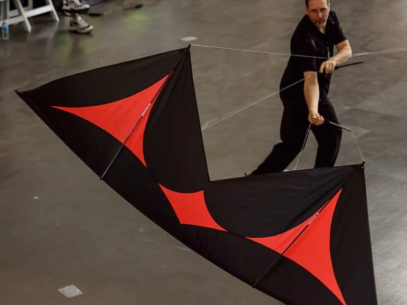 Kites of Asia