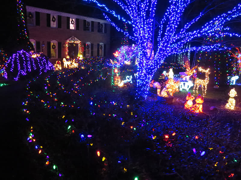 The Labs Home - Christmas Lights in Fairfax County