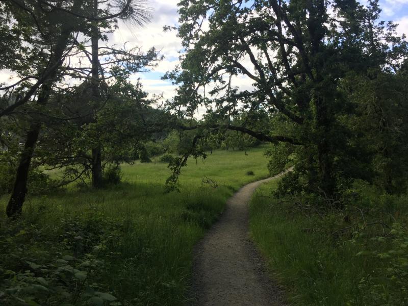 Ridgeline Trail by Melanie Griffin
