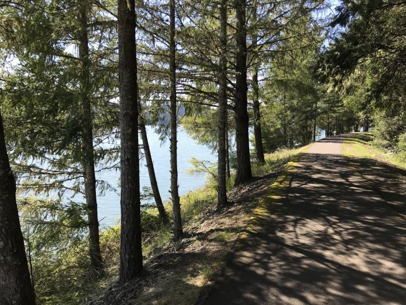Shady Row River Trail by Taj Morgan