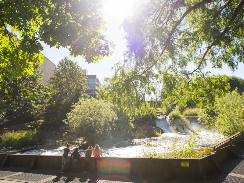 People watching a waterfall in Olympia, WA