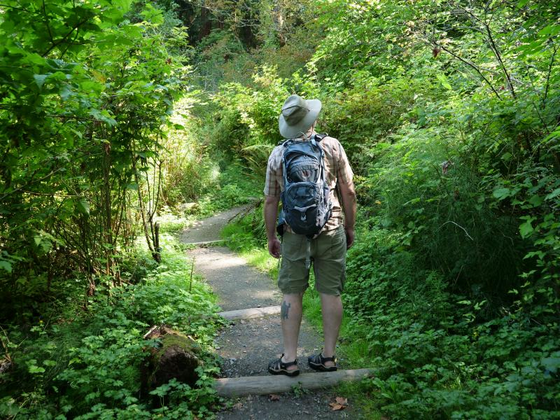 Man walking along Saltwater State Park trail surrounded by greenery