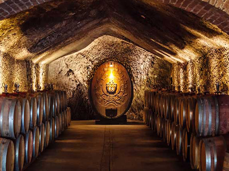 Wine cave at Buena Vista in Sonoma. Rows of barrels leading to a larger, vertical barrel with fancy scrollwork on it.