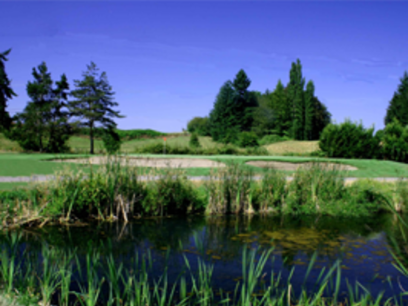 the cedars golf