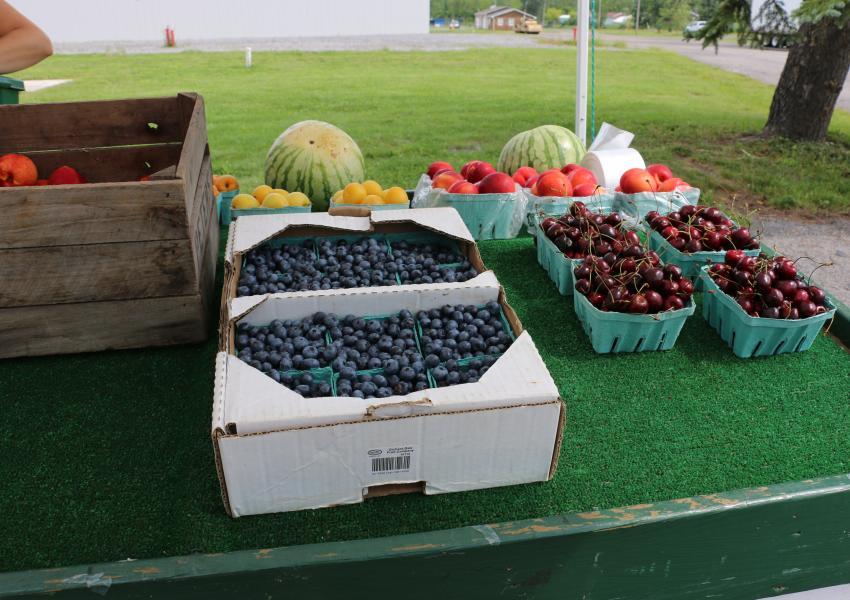 White's Farm Market