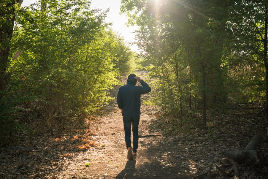Bosque Walk Hike