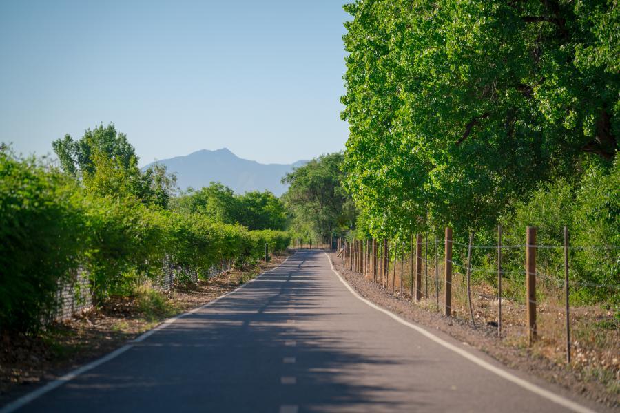 Bosque Bike Path