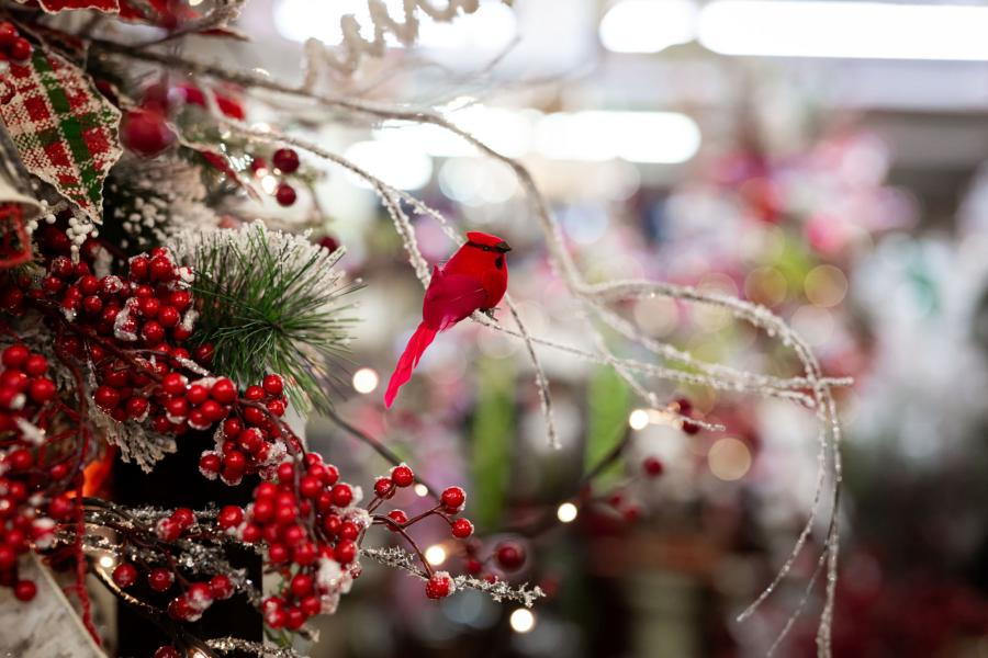 Photo of decorations at Decorator's Warehouse, close up of a cardinal
