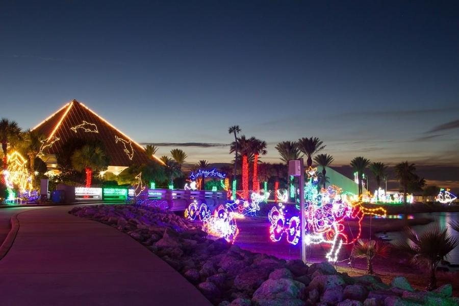 Moody Gardens Holiday Lights